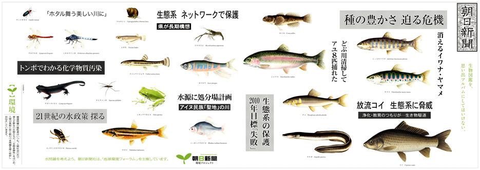 朝日新聞環境プロジェクト.jpg